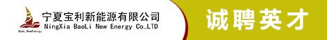 宁夏宝利新能源有限公司
